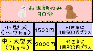 子犬のお世話 30分1500円